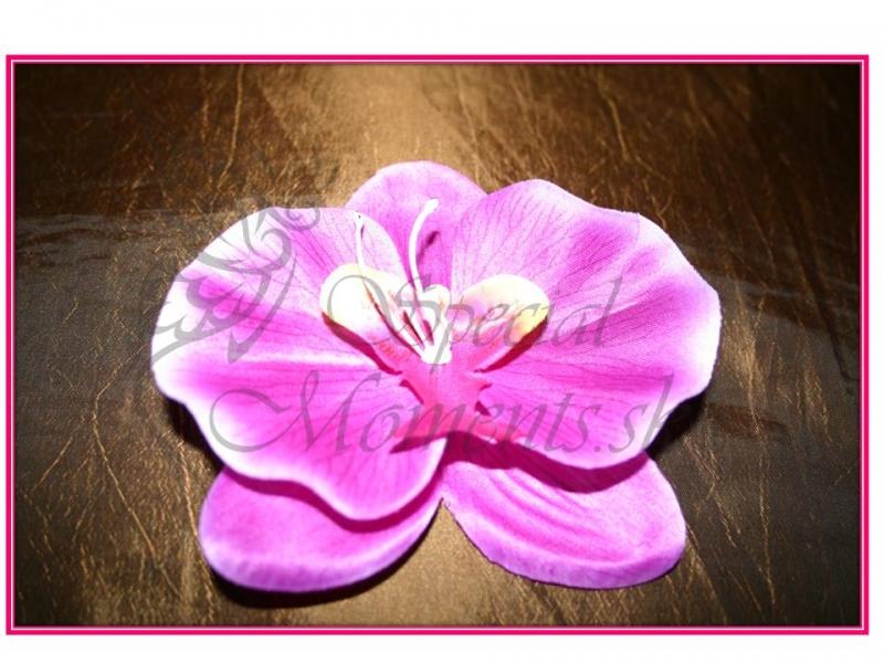 Fialová Orchidea do vlasov veľká - www.specialmoments.sk 256aea2902e